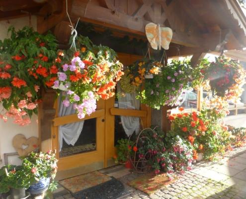 Ferienwohnung-Pension Berghof - Eingang