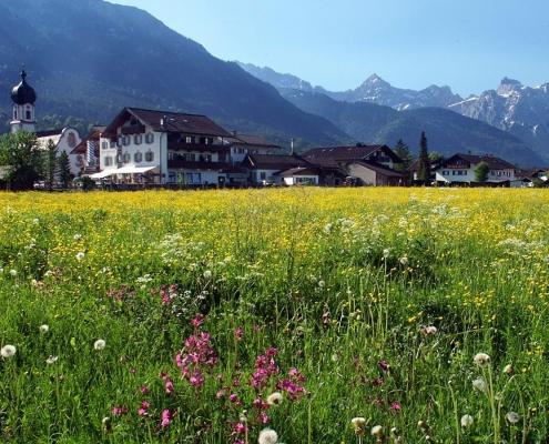 Ferienwohnung-Pension Berghof Wiese