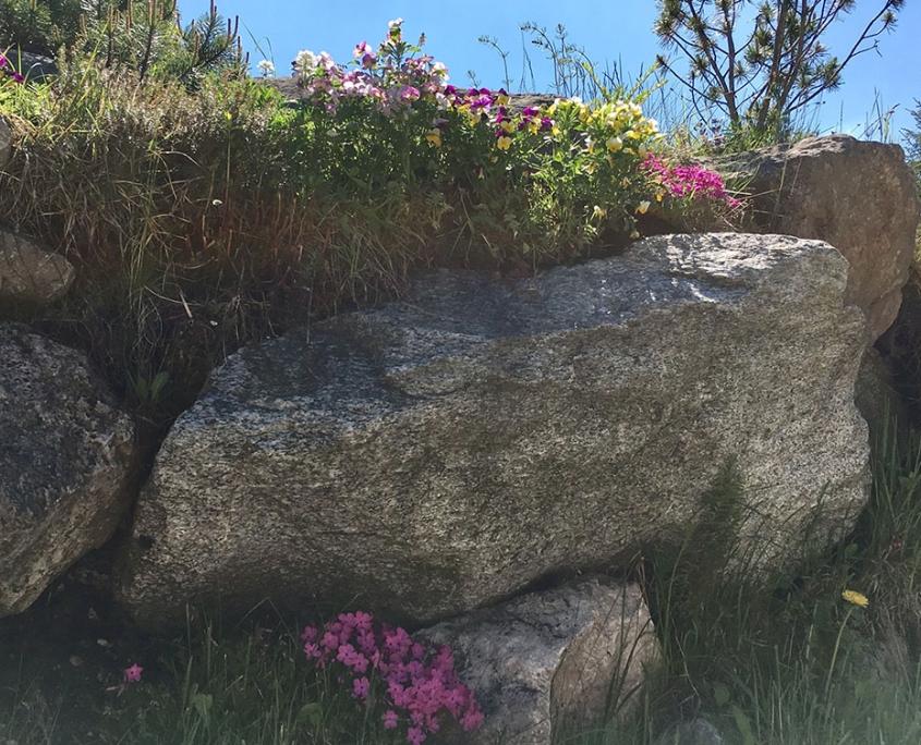 Ferienwohnung Bergkristall - Garten