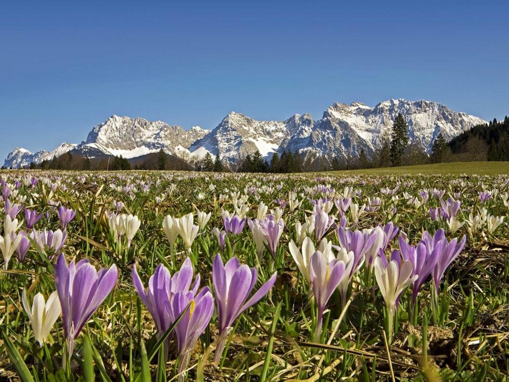 Frühling in den Bergen des Karwendel bei Krün-Wallgau