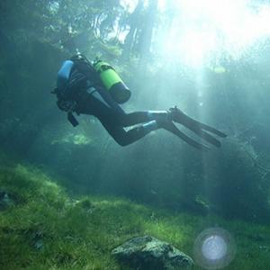 Taucher im Walchensee